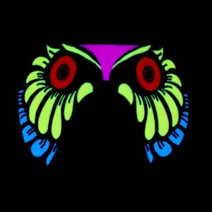 EL Glowing sound activated owl mask